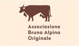 logo-associazione-bruna-alpina-originale-300-175